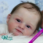 AW300246 - Dollkit 20 - Mary  - Limited .......... € 79,90 - Pre Order