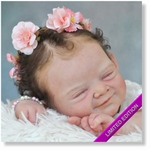 AW300255 - Dollkit 19 - Milo  Limited 444 pcs  -  € 79,90 - Pre Order